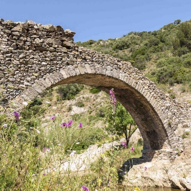 Pont Des Fees Grimaud Var (11)